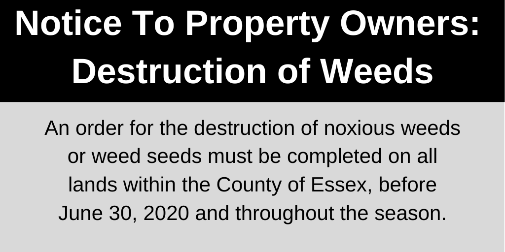A black and grey notice informing property owners that an order for the destruction of noxious weeds or weed seeds must be completed on all lands within the County of Essex, before June 30, 2020 and throughout the season.