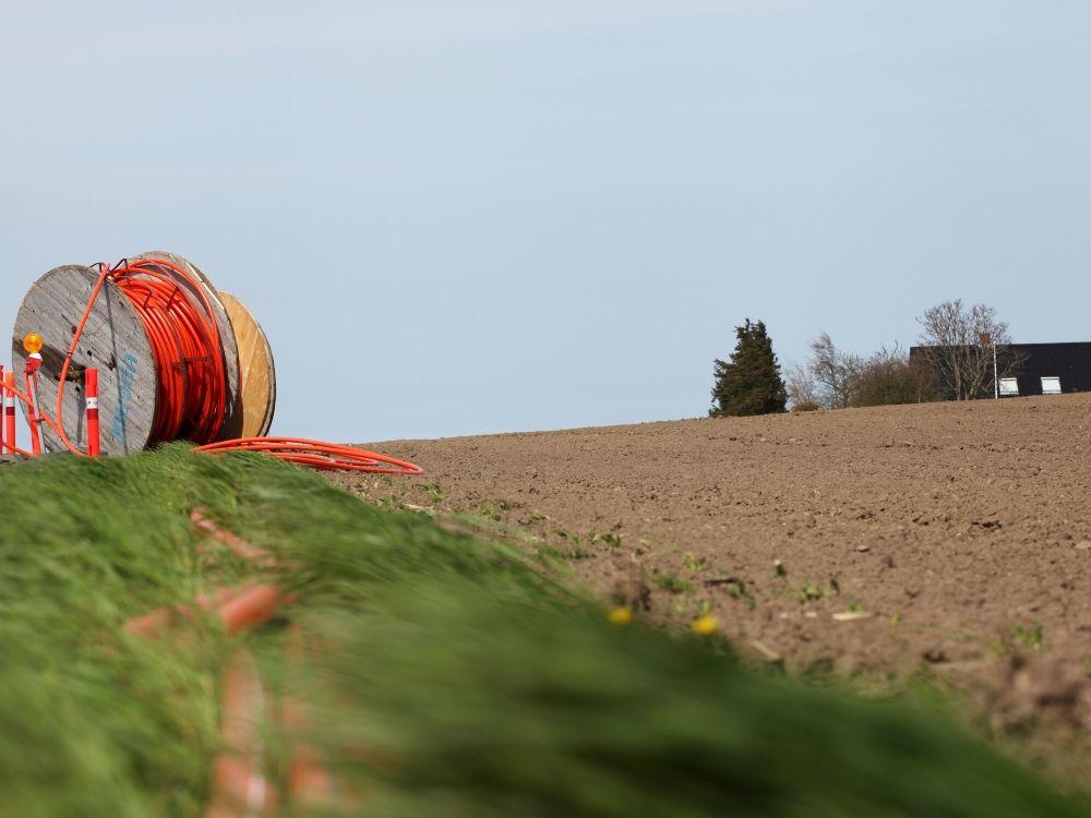 Orange Internet cable in a farm field.